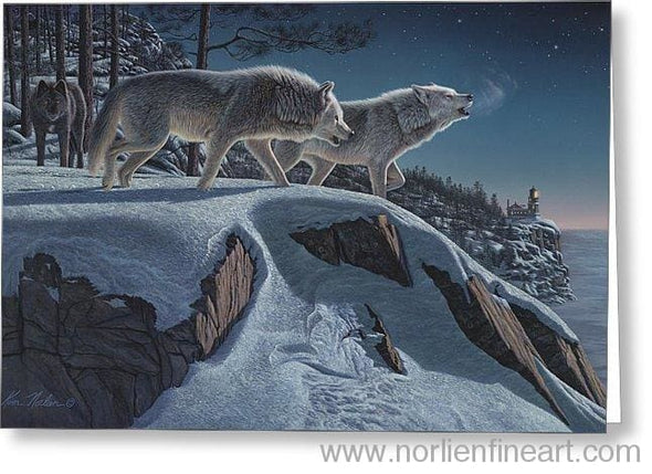 Moonlight Prowlers - Greeting Card - Single Card - Greeting Card