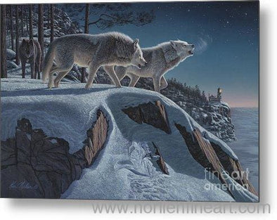 Moonlight Prowlers - Metal Print - 30.000 X 19.875 - Metal Print