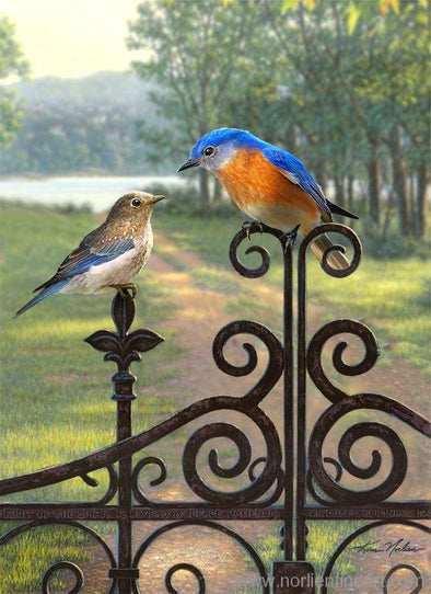 Songbird Father & Baby Bluebirds Print - Art Print