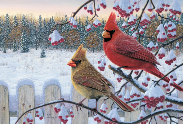 Winter Cardinals - Print - 8 X 12 - Prints & Giclees