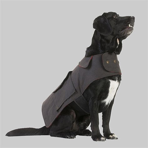 Swanndri Hunter Dog Coat sitting side view on a dog.