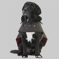 Swanndri Hunter Dog Coat Sitting view of the front on a dog.