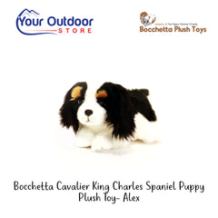 Bocchetta Cavalier King Charles Spaniel Puppy Plush Toy- Alex
