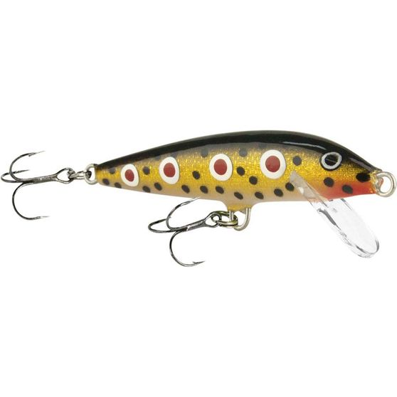 Brook Trout | Rapala CountDown Sinking