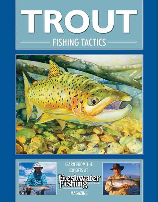 Trout Fishing Tactics. book
