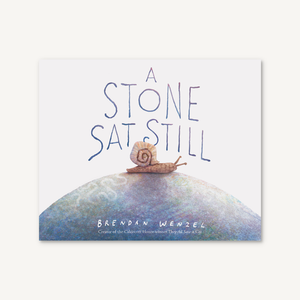 A stone Sat Still, kids book