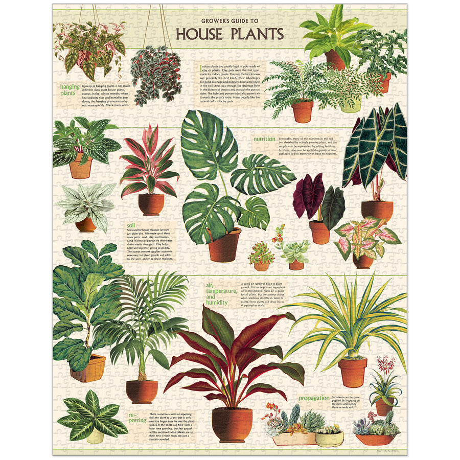 Houseplants Cavallini Puzzle Tube 1000pcs