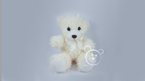 Teddy Stuff Bear Small Color 1