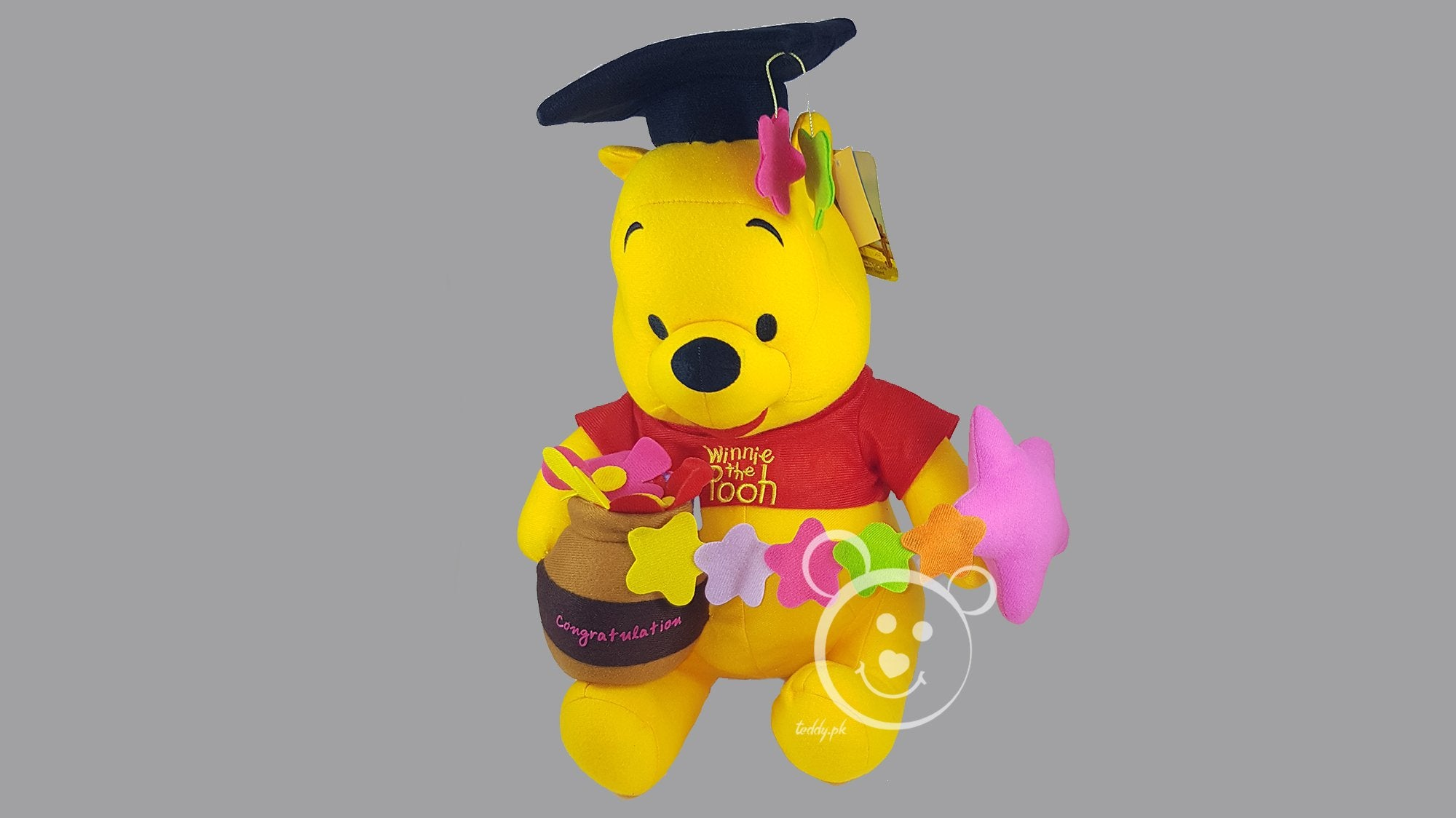 Disney Pooh Original 12 Inch - Design 2