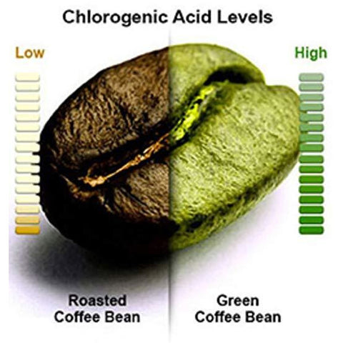 Image of QFL Green Coffee Bean Extract- 60 Capsules.