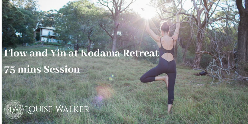 'Flow and Let Go' - ONLINE Flow and Yin at Kodama Retreat - Sat June 20th 8.30-9.45am