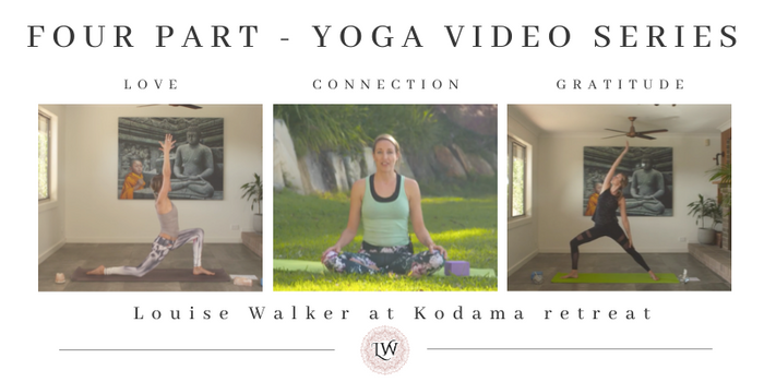Four Part Yoga Series from Kodama Retreat: Connection : Love : Gratitude : Mind