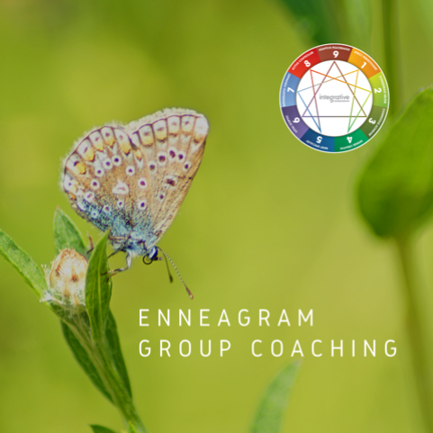 Enneagram Group Coaching - By invitation only