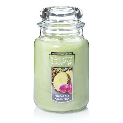 Yankee Classic Jar Candle - Pineapple Cilantro - Candle Cottage