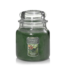 Yankee Classic Jar Candle - Medium - Balsam & Cedar
