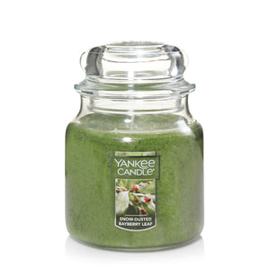 Yankee Classic Jar Candle - Medium - Snow Dusted Bayberry Leaf