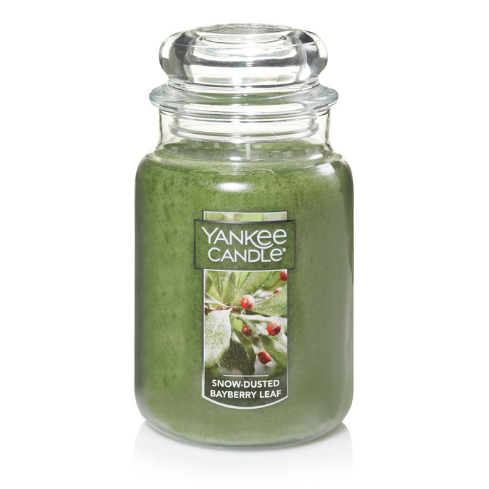 Yankee Classic Jar Candle - Large - Snow Dusted Bayberry Leaf