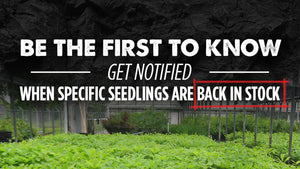 Receive In-Stock Notifications from Nativ Nurseries