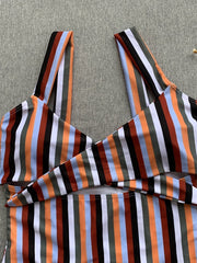 Striped Printed Bikini One-Piece Swimsuit
