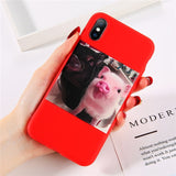 Cute Pig Case For iPhone