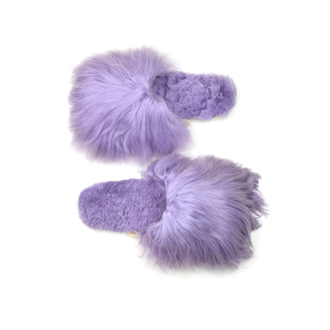 Ariana Bohling - Purple Alpaca Slipper