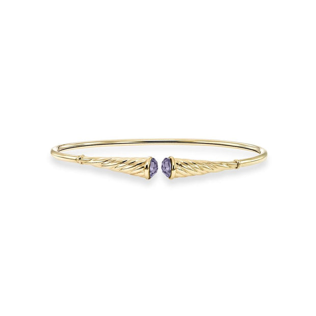 14K Yellow Gold Bangle Bracelet with Amethyst Accent