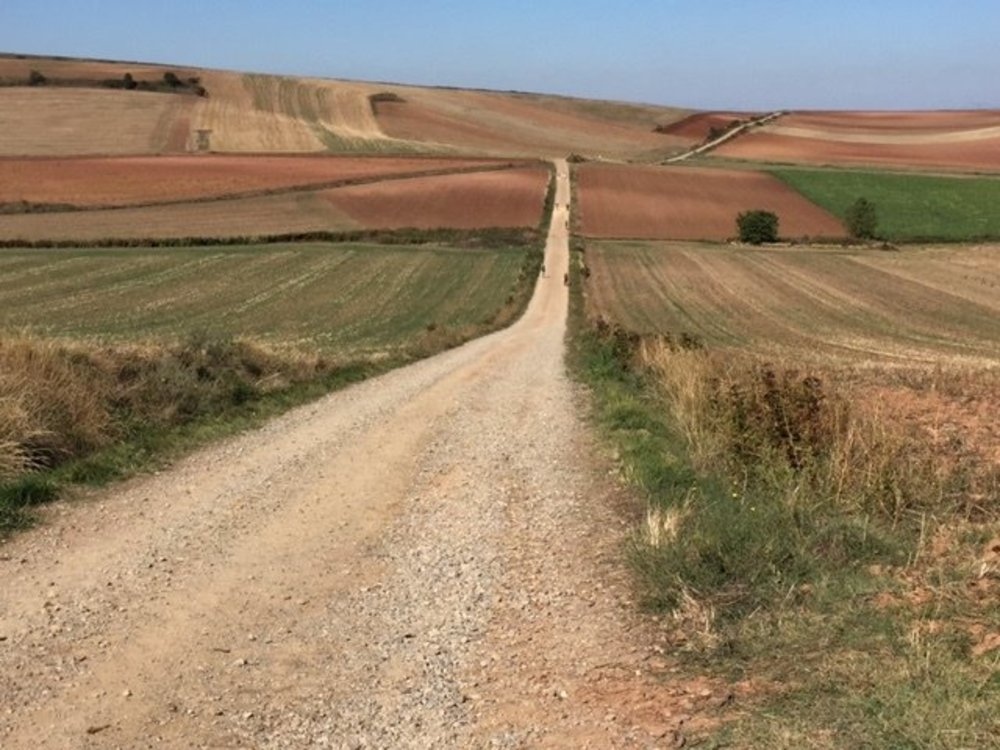 Walking the Camino for Christian