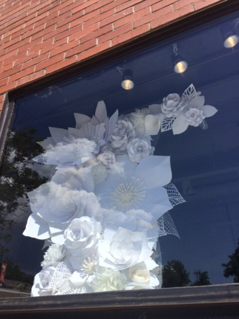 Todd Reed flower window display