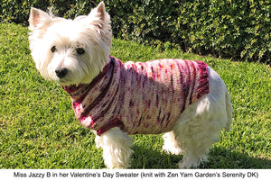The Ultimate Dog Sweater: Take One