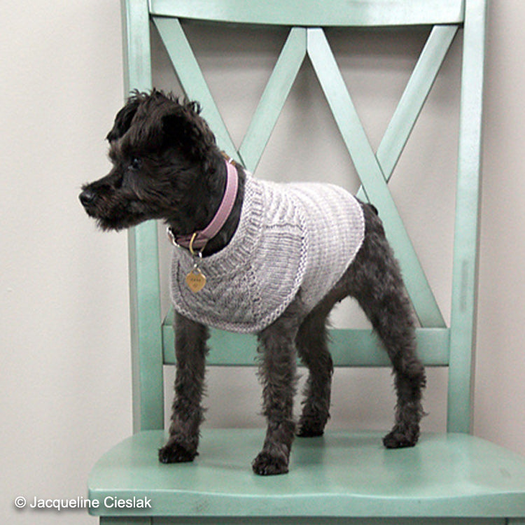 Dog on a chair wearing Harness-Friendly Dog Sweater knit in DK weight yarn designed by Jacqueline Cieslak