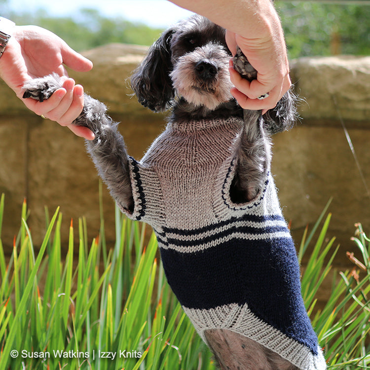 I'm a Fan! Colorblock Dog Sweater,  Knit Pattern - Tummy View