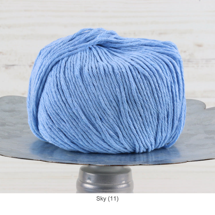 Trendsetter's Worsted Ecotone Yarn in Sky (11)
