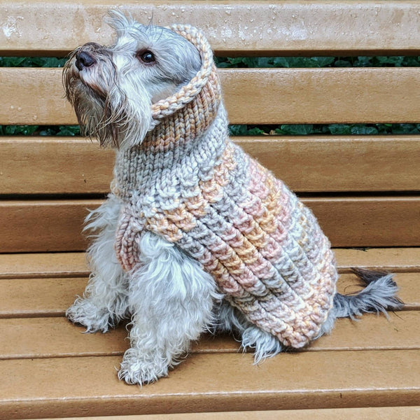 Ombre Pupper Sweater