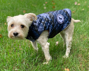 Oliver Thomas Haute Dog Coat-Blue Camo