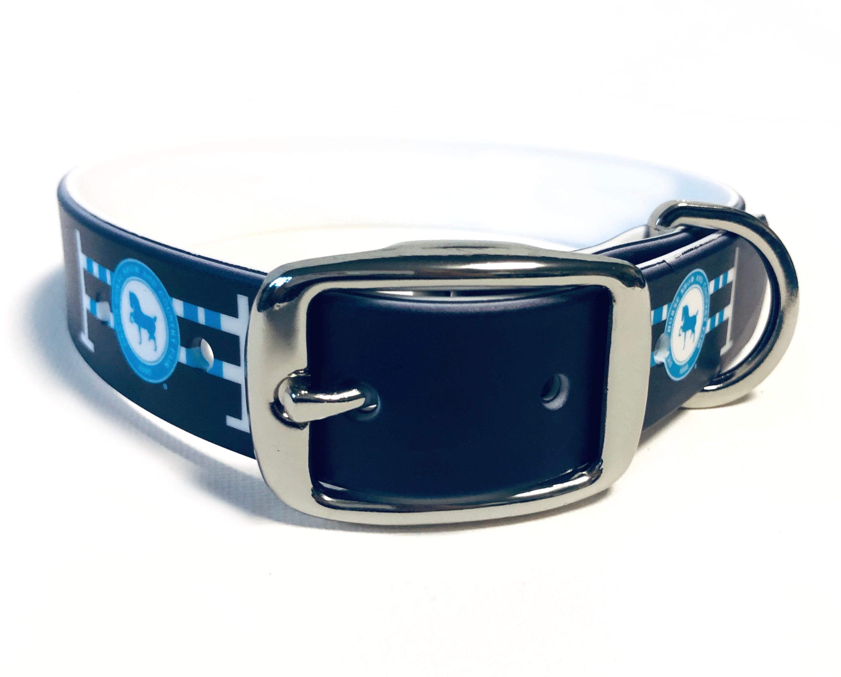 C4 Custom Devon Dog Collar
