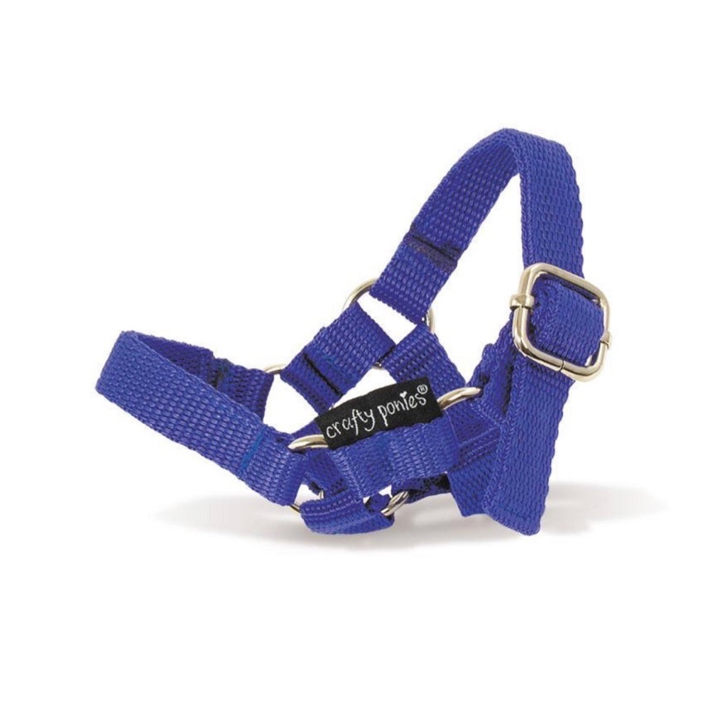 Crafty Pony Nylon Halter - Blue & Pink