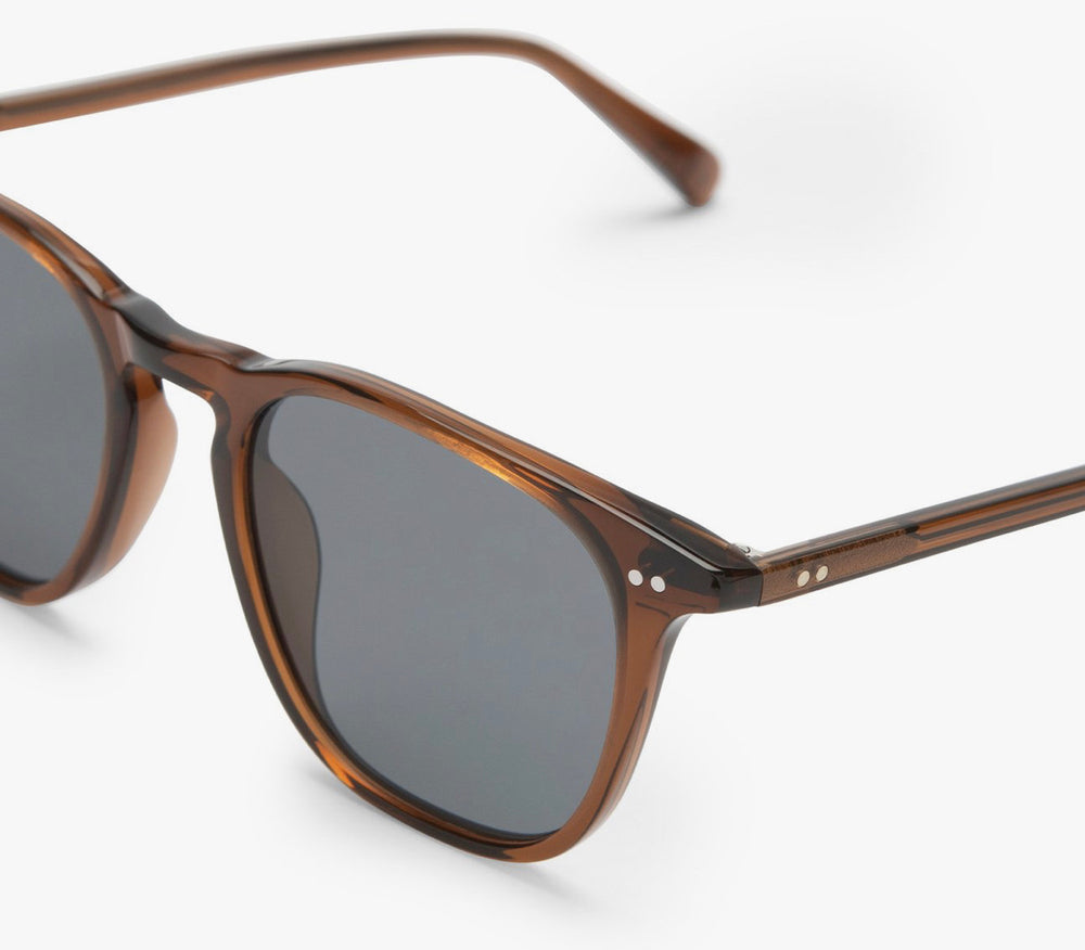Maxwell-whiskey polarized glasses