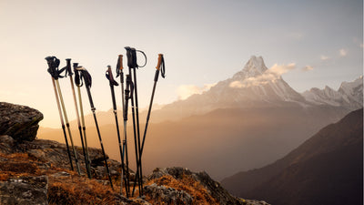Are Trekking Poles Worth It?