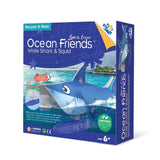 Ocean Friends - White Shark