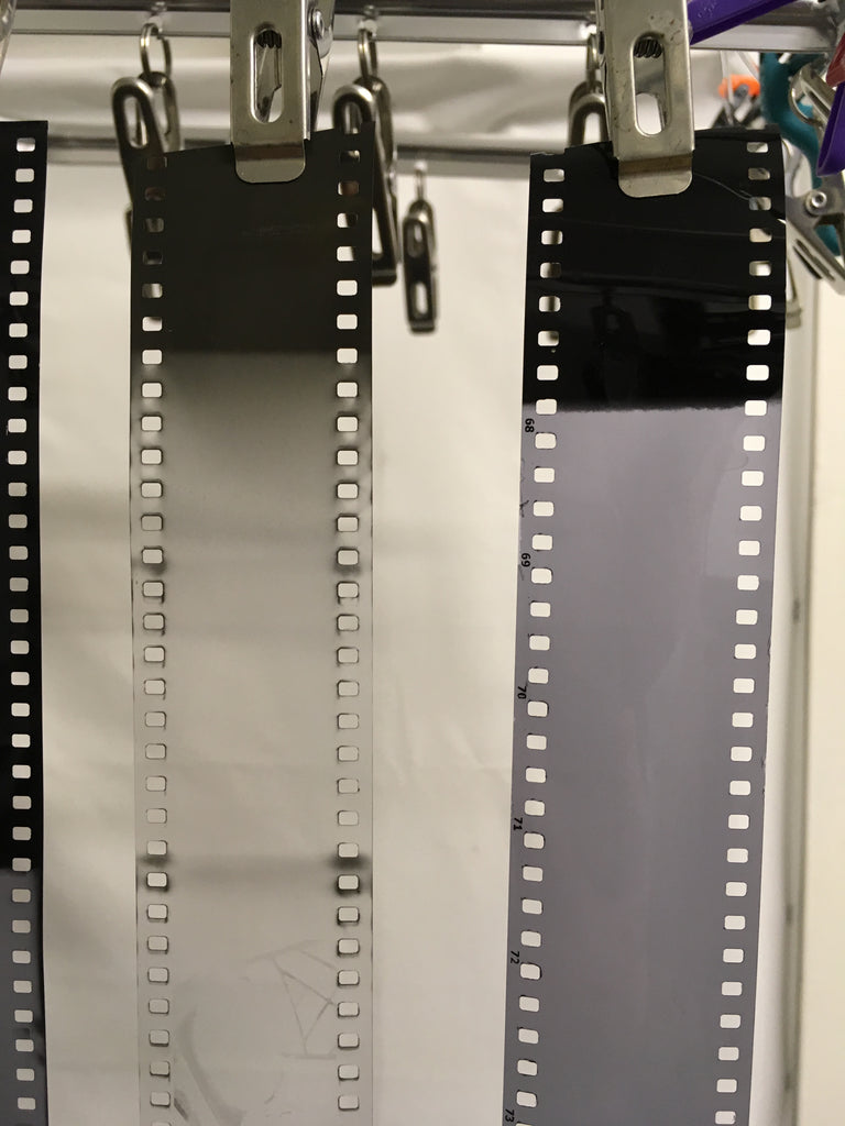 Silberra versus FOMA 35mm film drying