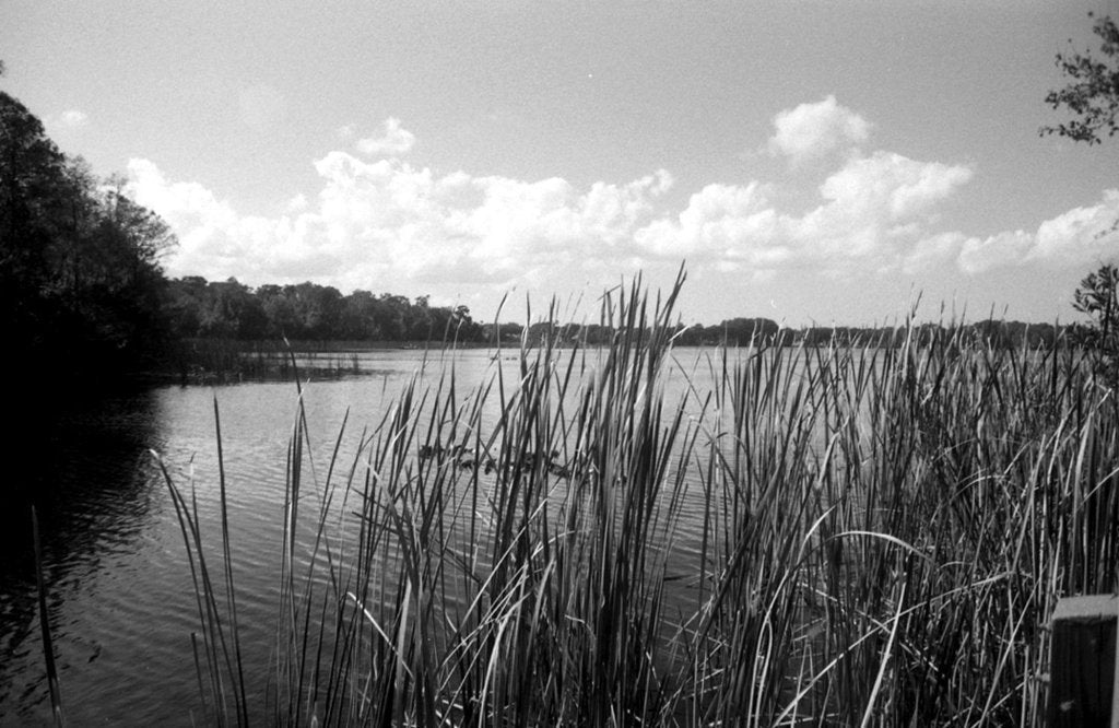 FPP Svema Foto 200 35mm Film - B&W - Analogue Wonderland