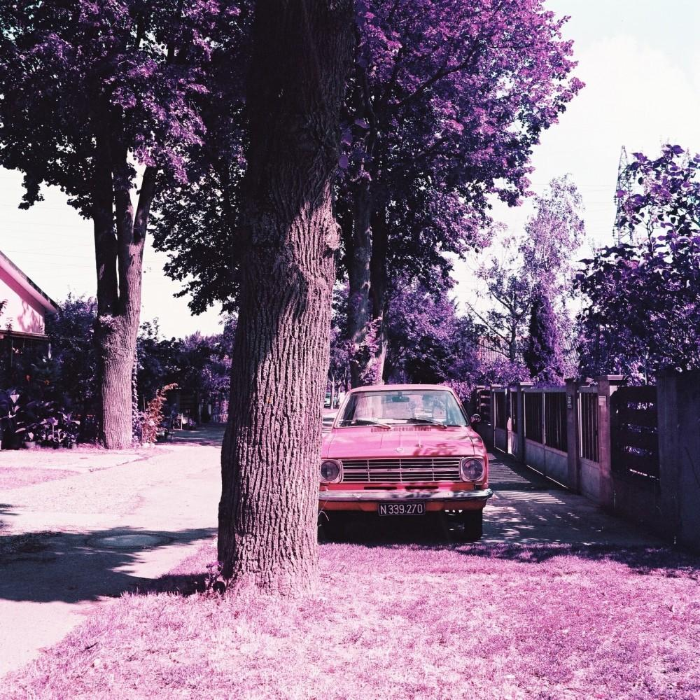 LomoChrome Purple Film - Lomography 120 - Analogue Wonderland
