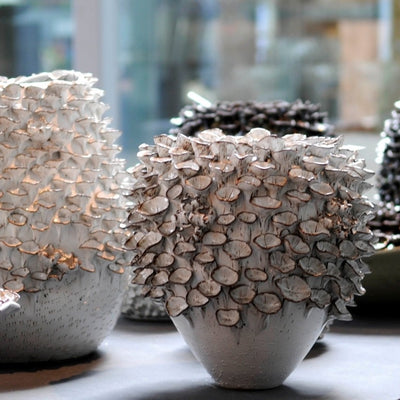 Barnacle Vase Collection