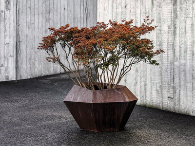 DOMANI CORTINA LOW PLANTER