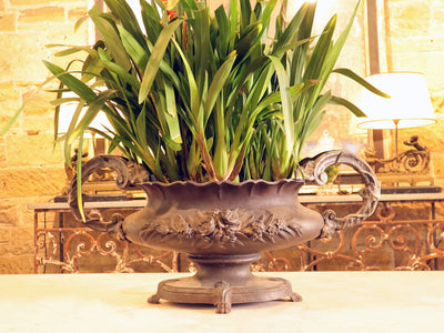French Cast iron 19th century planter with handles