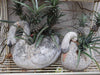 FRENCH COMPOSITE SWAN PLANTERS 1950'S
