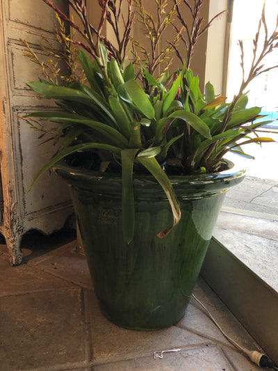 Glazed Anduze Planter