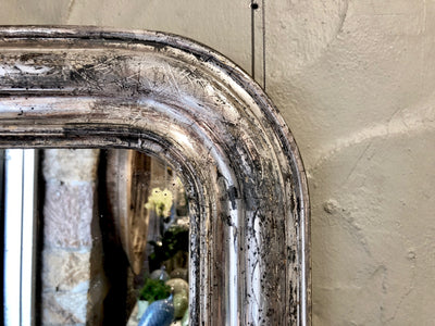Silver Salon Mirror