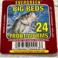 Red Wiggler Trout Worms (24 Pack)
