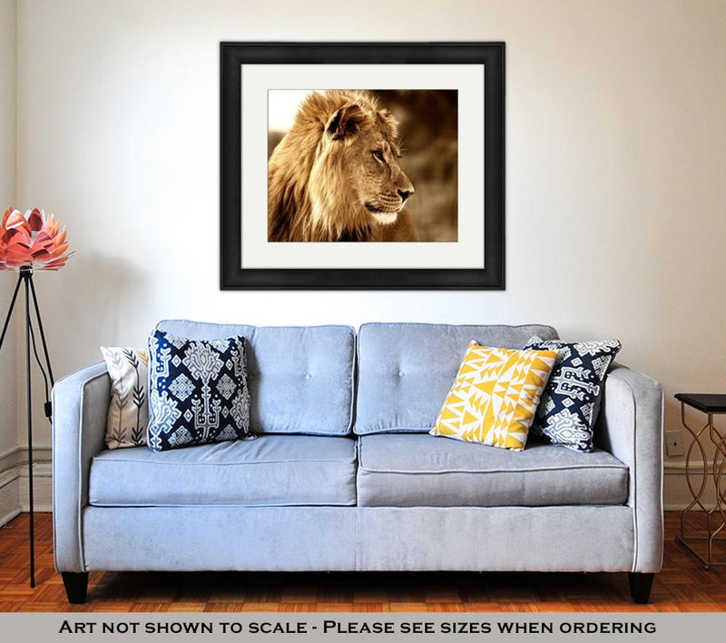 Framed Print, Majestic King